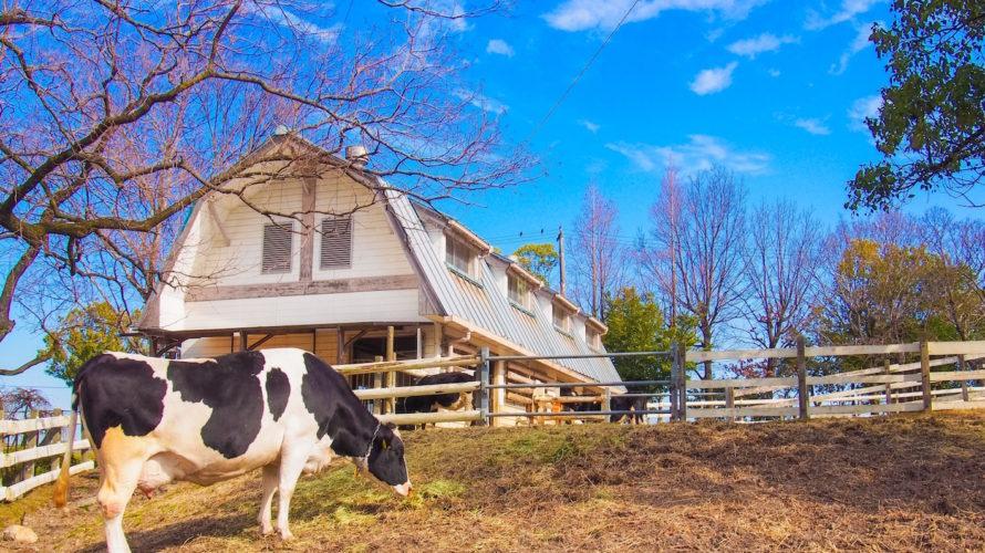 牧場の人気アトラクションで感じる、不動産集客の今後